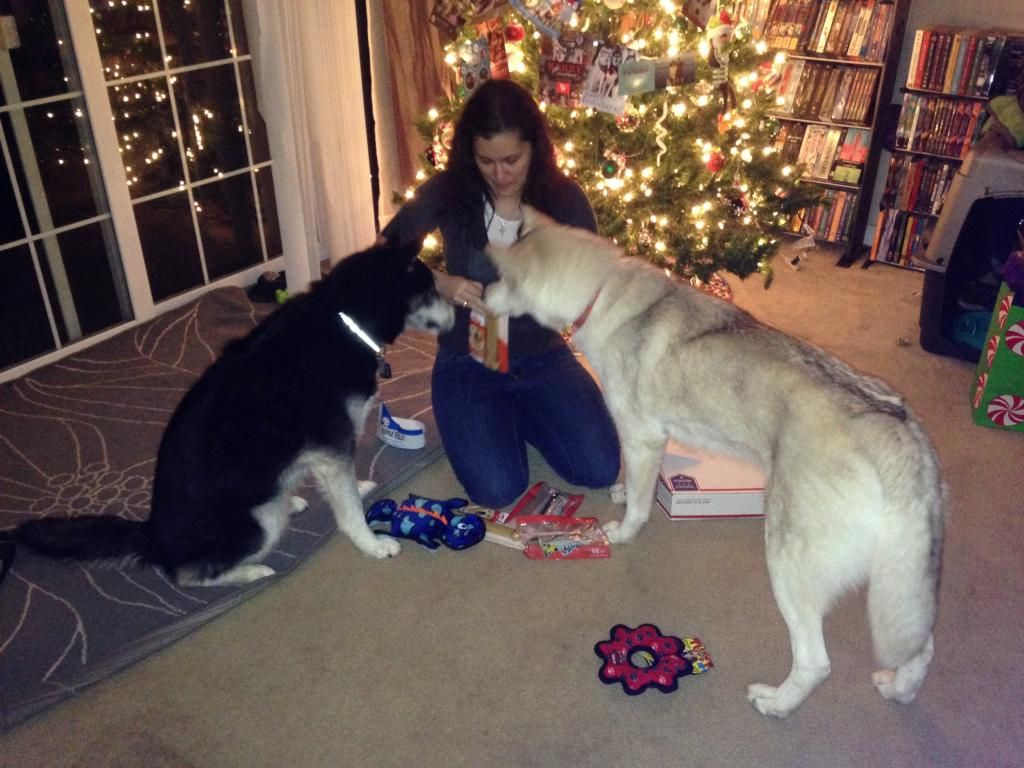 Secret Santa REVEAL! 2014 IMG_0666_zps0cf79559
