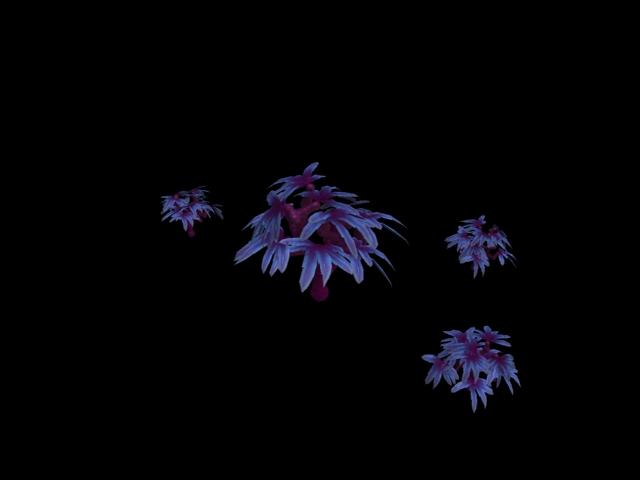 Mortuus Planta, Lanzaguisantes y Silva Durmiente [JDF] CRE_SilvaDurmiente-11505355_sml_zps6f2aff3c