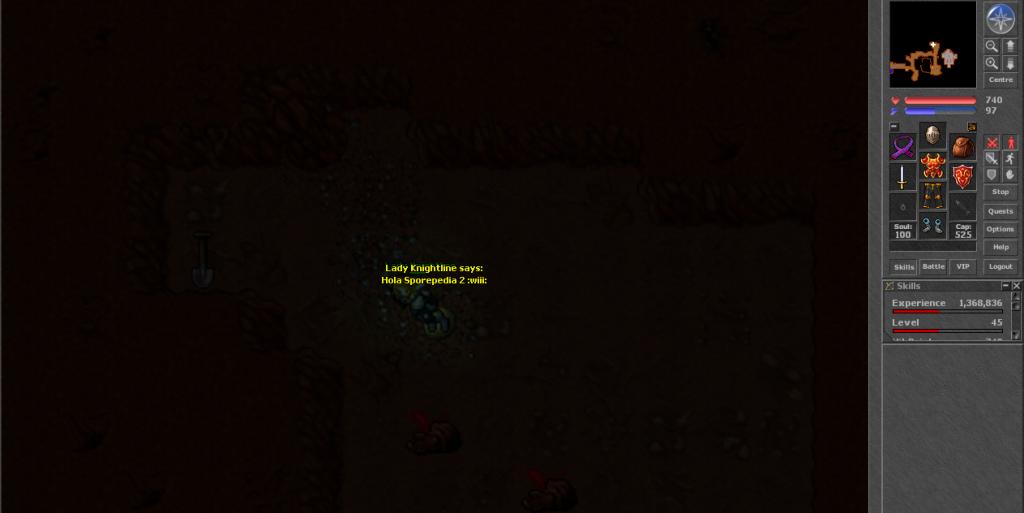 Tibia, un MMORPG en 2D Ladyknightline_zps226a4b1e