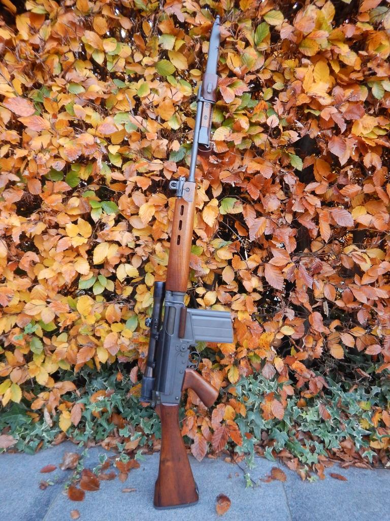 FAL Luxembourg Gendarmerie DSCN8150_zpswsvrp3mq