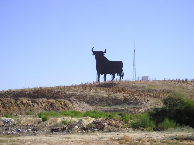 (08) 25/08/2010 Desde Jerez / Santiago P8250004