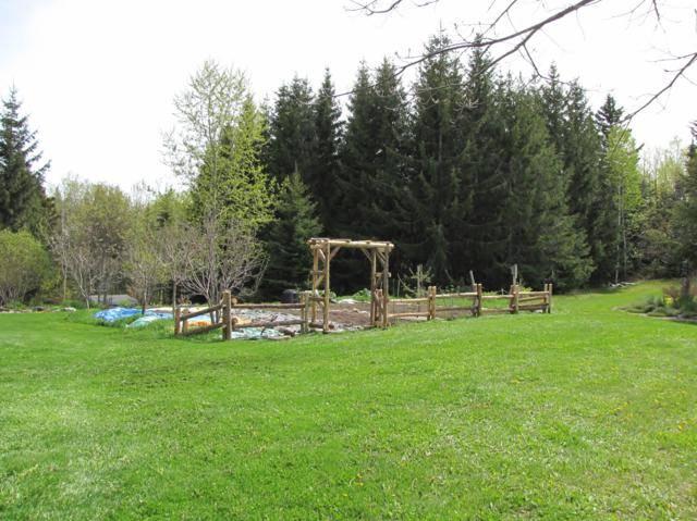 Une tonelle et clôture pour des Kiwi au jardin potager. IMG_0067_640x479