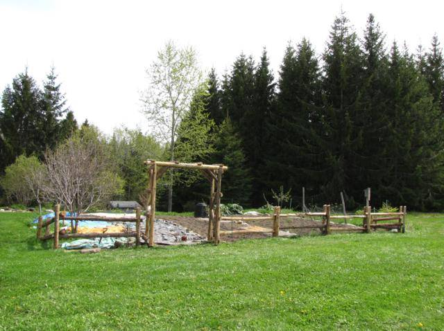 Une tonelle et clôture pour des Kiwi au jardin potager. IMG_0069_640x478