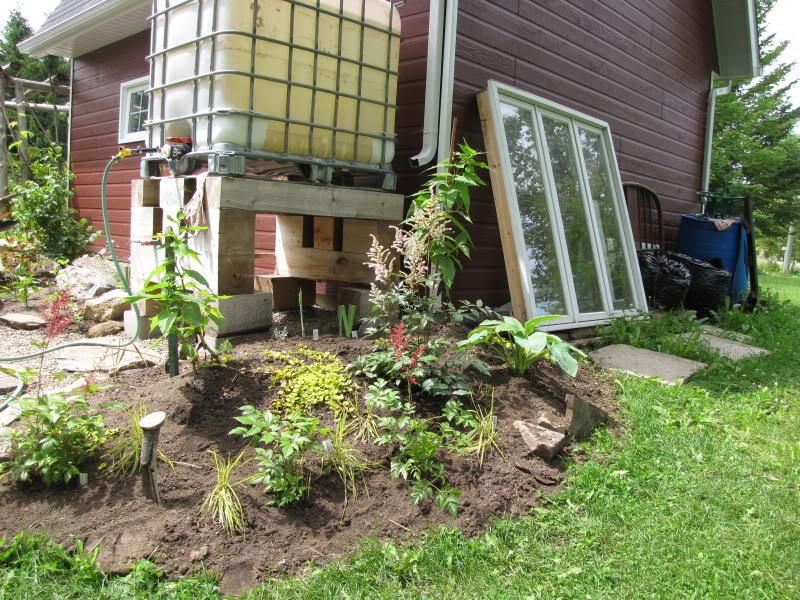 Pour habiller mon récupérateur d'eau 24-07-2009006