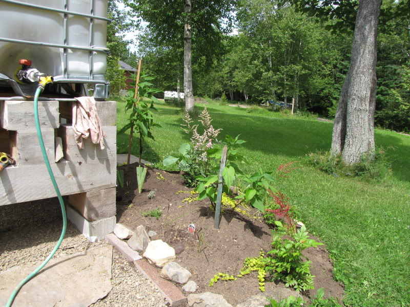 Pour habiller mon récupérateur d'eau 24-07-2009012
