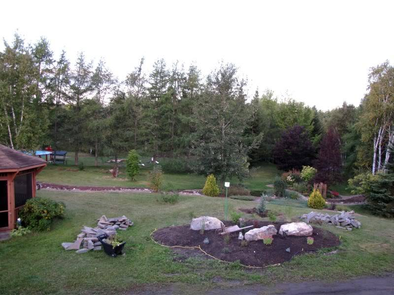 Platebande en avant de la maison 23-09-2010008