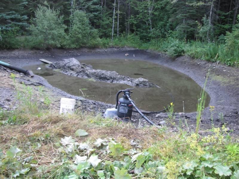 Réaménagement du lac  IMG_7041