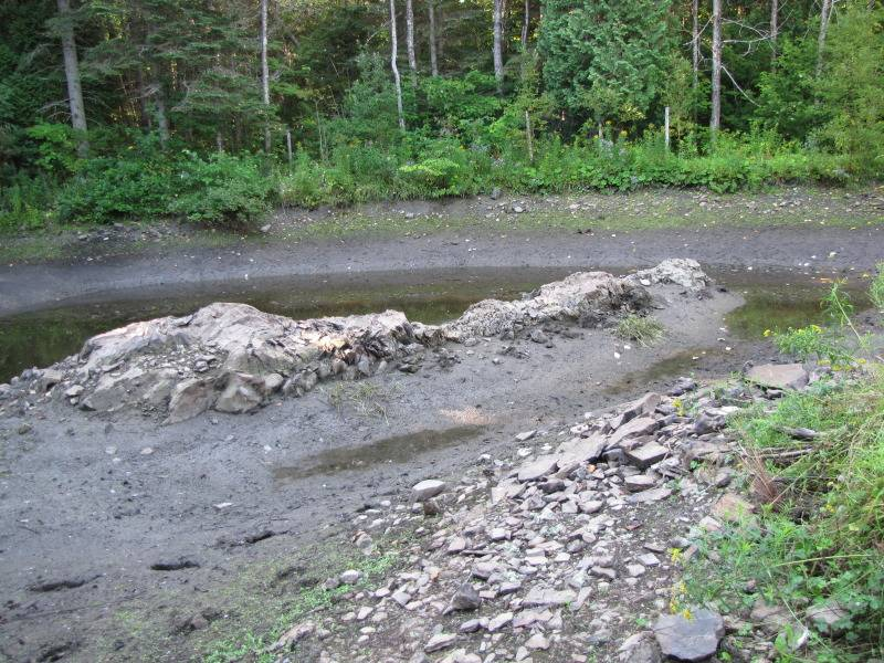 Réaménagement du lac  IMG_8568