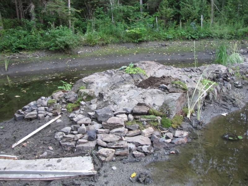 Réaménagement du lac  IMG_8595