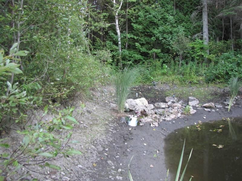 Réaménagement du lac  IMG_8716