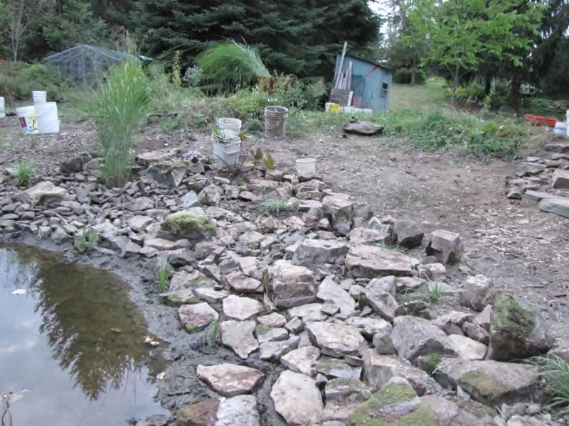 Réaménagement du lac  IMG_8760