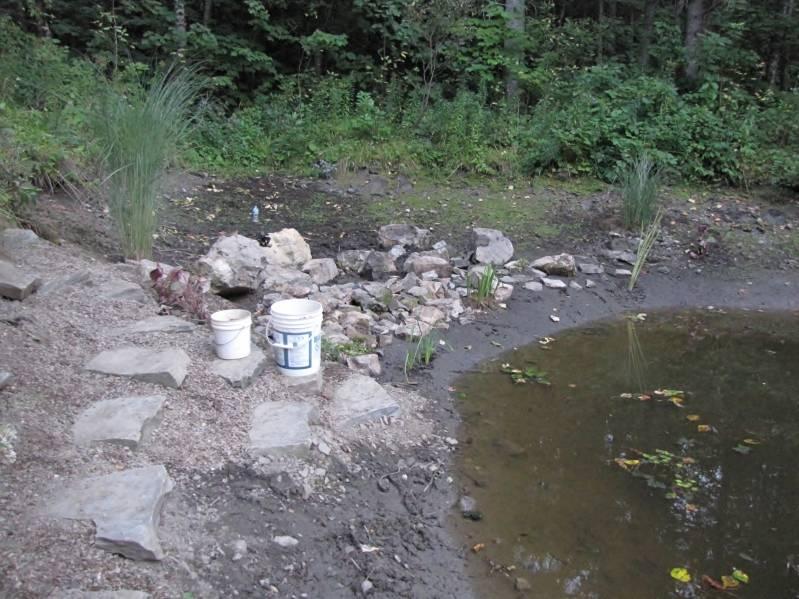 Réaménagement du lac  IMG_8762