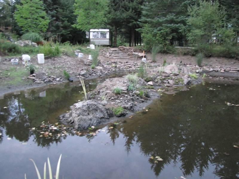 Réaménagement du lac  IMG_8770