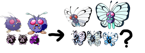 Pokemon Conspiracies, Theories, Myths, and Legends Venonat_butterfree_connection