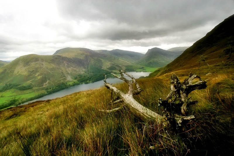 Buttermere Img_28111