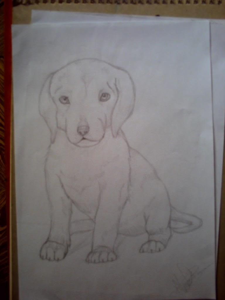 Galería de dibujos de Kivana - Página 4 PICT0032_zps22b97b93