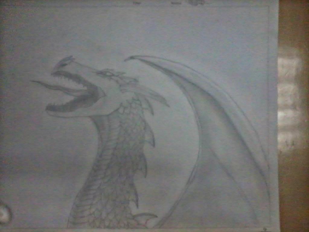 Galería de dibujos de Kivana - Página 4 Dibjdrago_zps8da948ad