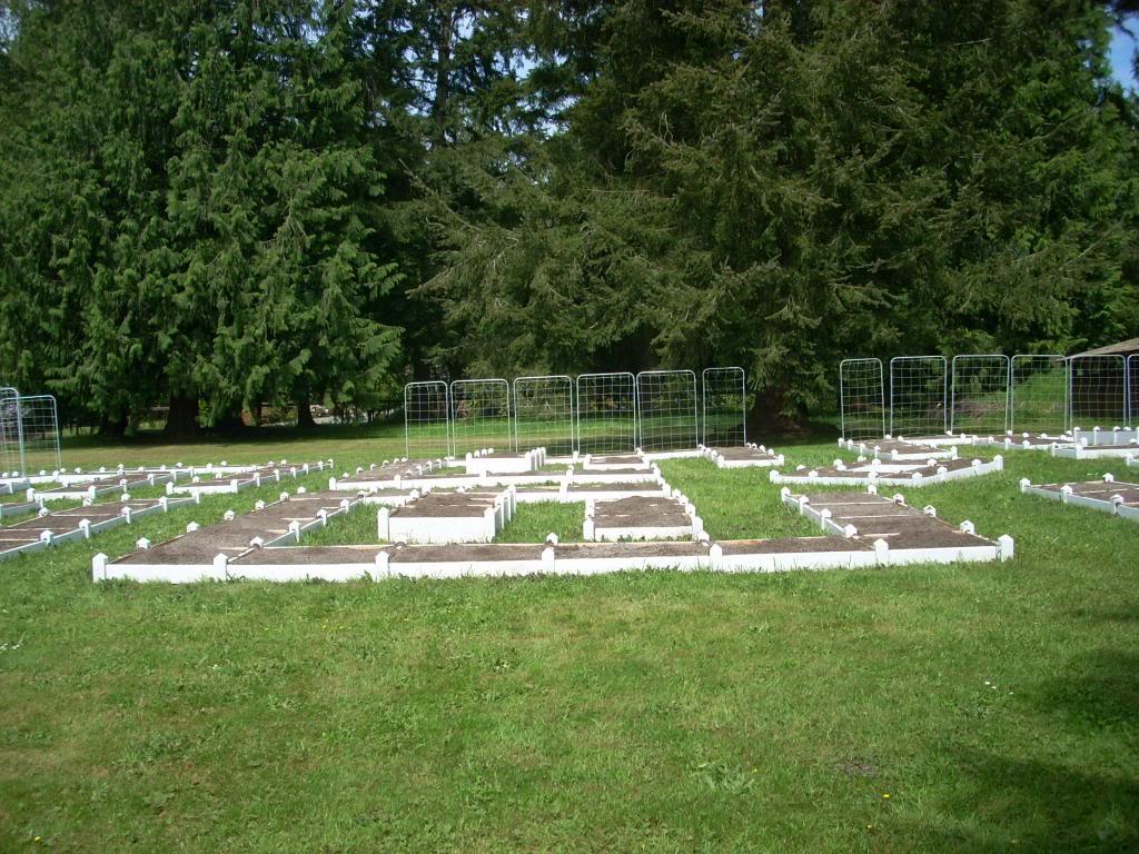 2,000 Sq. Foot Garden Need Plant Ideas DSCN1429_zps7fd81dc1