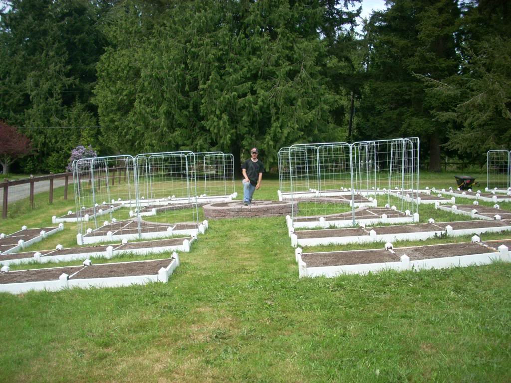 2,000 Sq. Foot Garden Need Plant Ideas DSCN1443_zpsa9e1d79c
