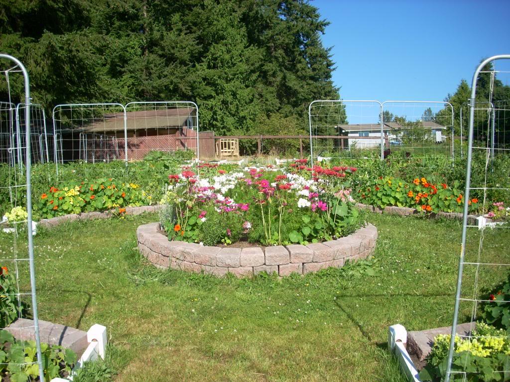2,000 Sq. Foot Garden Need Plant Ideas - Page 2 DSCN1514_zps9e60a14b