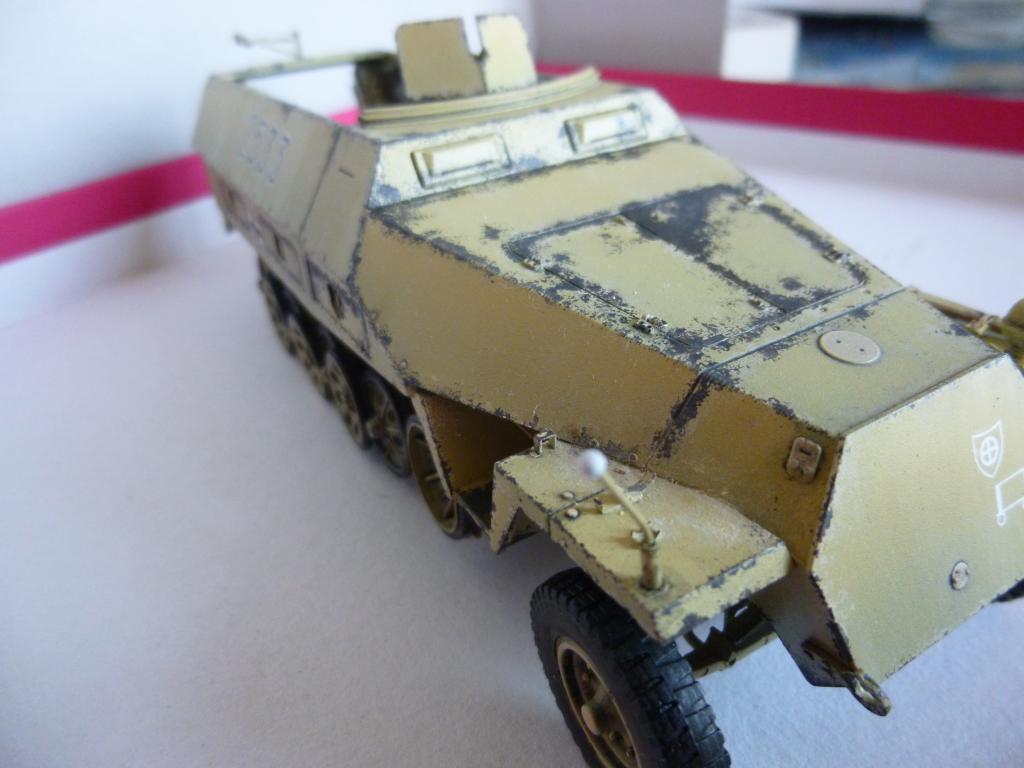 un SDKFZ 251/1 auf D/ Division Wiking 1944/ [Dragon,1/35] P1180447_zps5f4113fd
