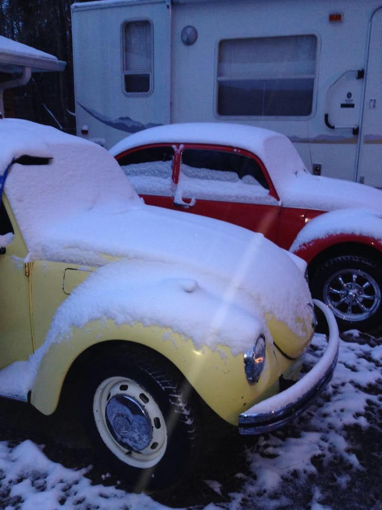 '73 Standard Beetle (AKA The Red Baron) 0e65cefc674d12b41550e8dfd6c999f6_zpse2eabc0b