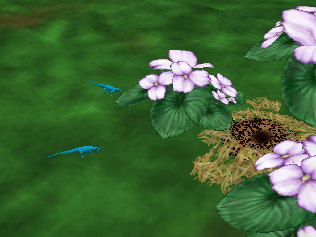 Gecko Enano Turquesa / Turquoise Dwarf Gecko Enlarged_zps48ad39c6