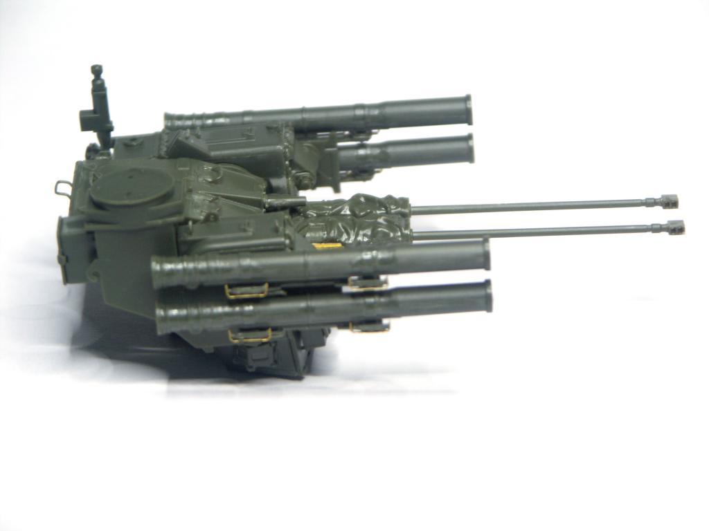 BMPT RUSSIAN TERMINATOR (MENG 1/35) PICT0142_zpsbe426a49