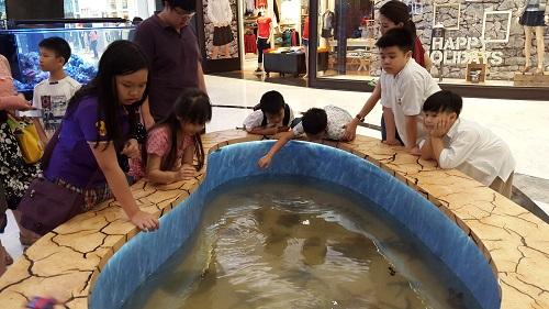 Event biota laut Indofishclub bersama Lippo Mall Puri 1%2010_zpssexomtn8
