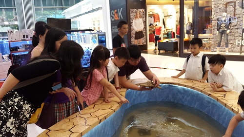 Event biota laut Indofishclub bersama Lippo Mall Puri 1%2012_zpsgdvlk339