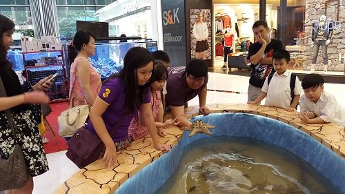 Event biota laut Indofishclub bersama Lippo Mall Puri 1%2013_zpslnhflzii