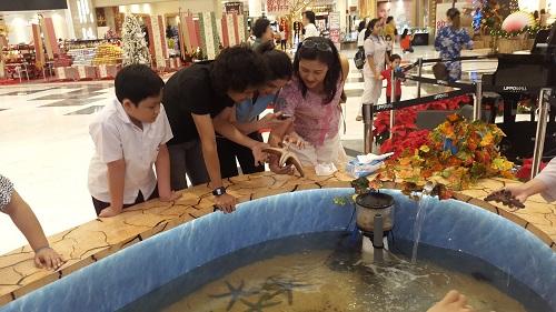 Event biota laut Indofishclub bersama Lippo Mall Puri 1%2020_zps5d3gmhbv