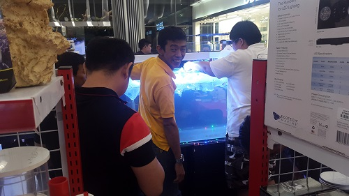 Event biota laut Indofishclub bersama Lippo Mall Puri 1%206_zpsxrusymm7