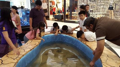 Event biota laut Indofishclub bersama Lippo Mall Puri 1%209_zps7joiik8o