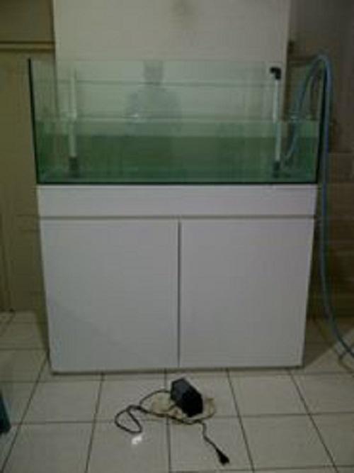 Produk Seas Aqua  11083634_1390613414589736_2511828895494312049_n_zpstunyfg4v