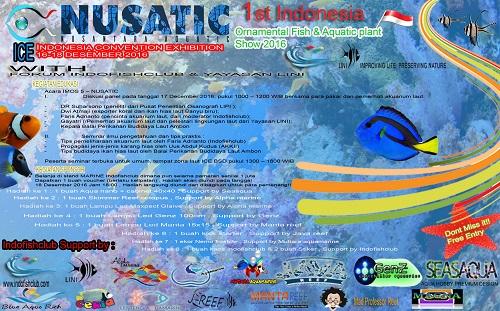 Event biota laut Indofishclub bersama NUSATIC 2016-10-29_113610%20copy_zpsuzobgccr