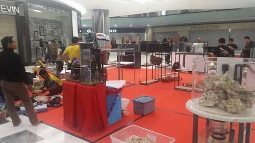 Event biota laut Indofishclub bersama Lippo Mall Puri 5_zpsnwykyp8f