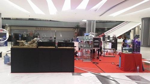 Event biota laut Indofishclub bersama Lippo Mall Puri 7_zpspt2qfzlv