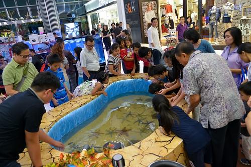 Event biota laut Indofishclub bersama Lippo Mall Puri DSC_5073%20copy_zpsarnk8cqa