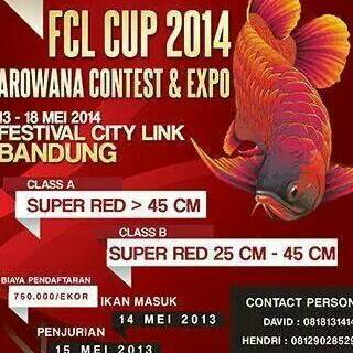 Event and Announcement FCLCup2014_zpsc9ea3bb5