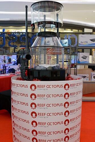 Event biota laut Indofishclub bersama Lippo Mall Puri IMG-20151127-WA0010_zpslzfegtiz