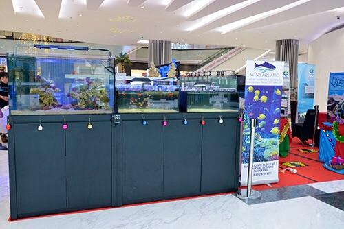 Event biota laut Indofishclub bersama Lippo Mall Puri IMG-20151127-WA0011_zpsatamabtr