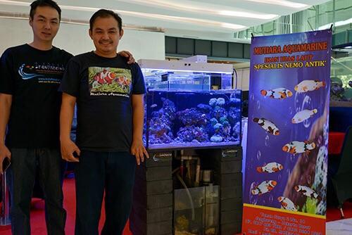 Event biota laut Indofishclub bersama Lippo Mall Puri IMG-20151127-WA0012_zps1xfpa4rc