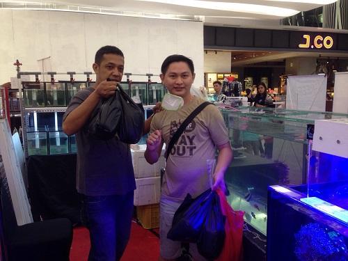 Event biota laut Indofishclub bersama Lippo Mall Puri IMG-20151128-WA0041_zpsclopmvsb