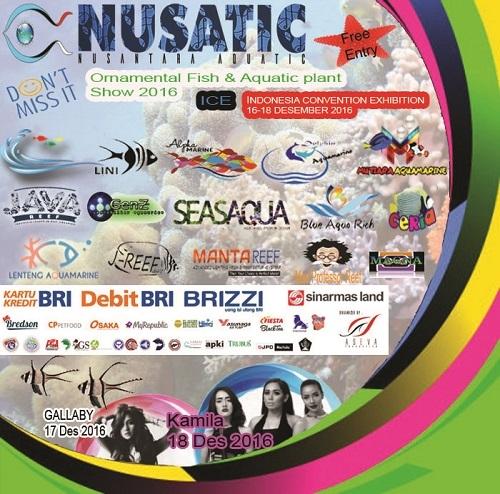 Event biota laut Indofishclub bersama NUSATIC Untitled-1%20copy%20-%20Copy_zps766unqah