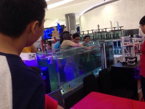 Event biota laut Indofishclub bersama Lippo Mall Puri C_zpsus3edmfp