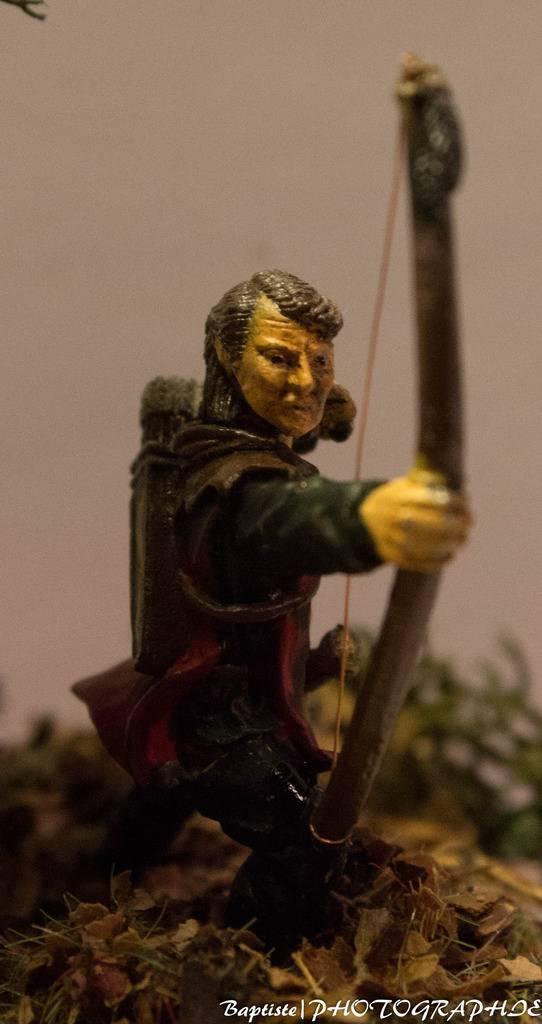 Archer dans les bois  IMG_3611_zpsjlolsaga
