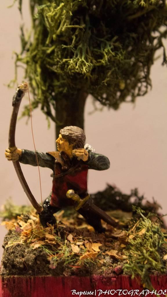 Archer dans les bois  IMG_3616_zps99kugbtq