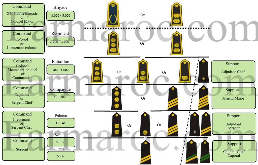 Unités, Grades et insignes dans les FAR / Moroccan Units and Ranks - Page 5 Sintiacutetulo_zps0b45db7f