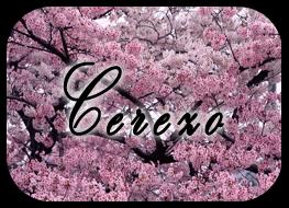 Varita Varita~! :3 Cerezo01_zps1c66b77a